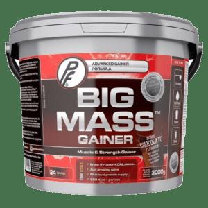 Big Mass Gainer