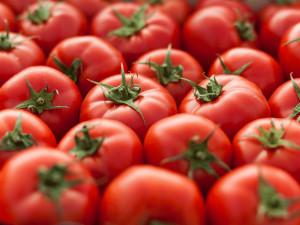 Tomat diett